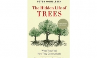 The Hidden Life of Trees, Peter Wohlleben, Mysteries of Nature, nature books, nature reading
